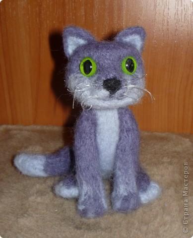 кот Васька фото 2