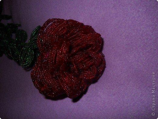 Роза метровая из бисера фото 1