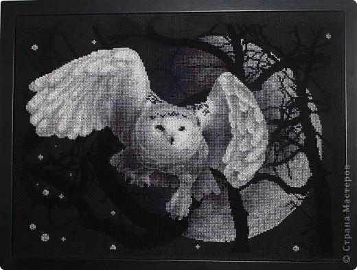 Вышивка крестом белая сова