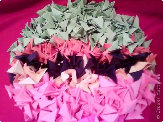 Цветы на кактусе. фото 3