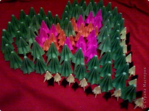Цветы на кактусе. фото 4