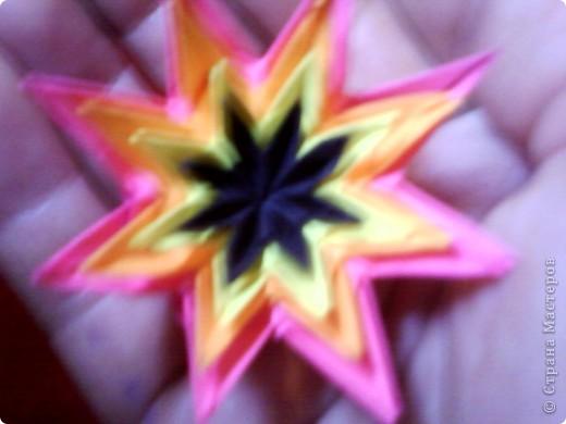 Цветы на кактусе. фото 10