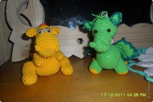 мои  дракоши фото 2