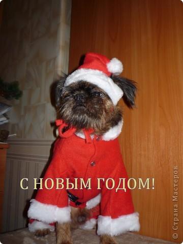 костюмчик на новый год