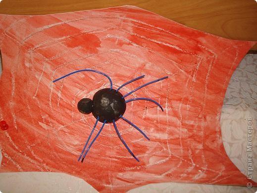 Паутинка и паучки. фото 3