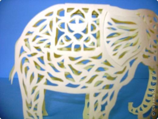 Этот слон сделан по шаблону Зульфии Дадашовой.Ссылка на работу ниже. фото 2