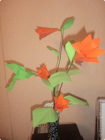 Складывала по видео-схеме http://iz-bumagi.com/video-shemy/kolibri-origami-video-shema,а цветы сложены по книге Л.А...