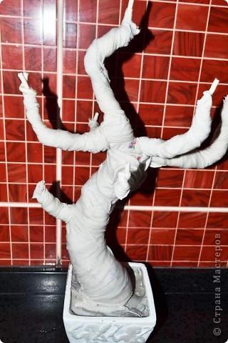 Бонсай топиарий Мастер-класс Бонсай из ниток травка Гипс Гуашь Картон Клей Нитки Проволока фото 18