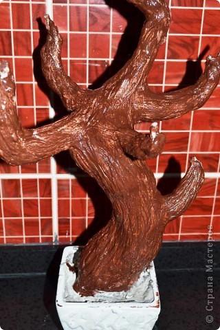 Бонсай топиарий Мастер-класс Бонсай из ниток травка Гипс Гуашь Картон Клей Нитки Проволока фото 35