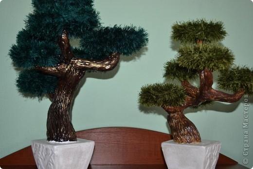 """Доброго времени суток. рада всех видеть у себя в гостях!!! Сегодня хочу вам показать как я делаю деревья с применением ниток """"травка"""". Кто заинтересовался приятного просмотра. фото 72"""