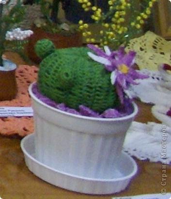 Вязание крючком кактус