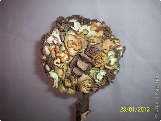 Деревянными розочками меня заразила Оля(Eiris), вот из остатка накрученных и соорудила такое деревце фото 3
