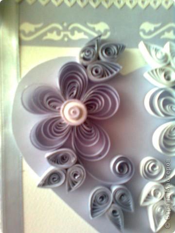 още лила фото 6