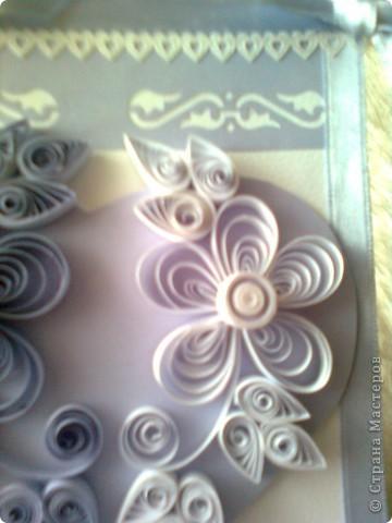 още лила фото 5