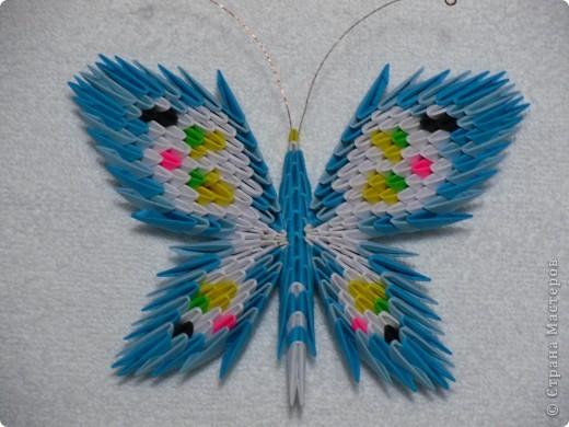 Бабочки оригами Бумага