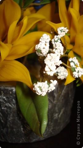 Мастер-класс Флористика Лепка Гипсофила +малюсенький МК Фарфор холодный фото 2
