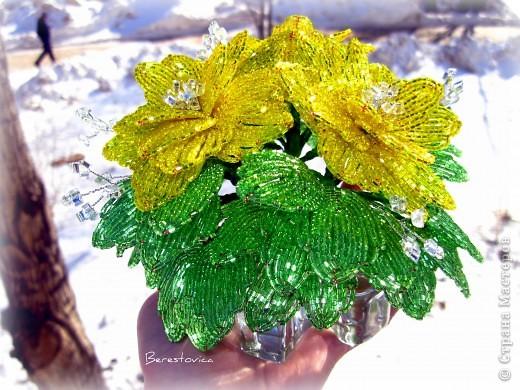 Поделка изделие Бисероплетение Деревья цветы цветущие деревья Бисер фото 6.