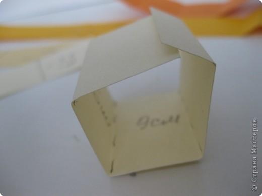 Продолжаем занятия в технике объемного моделирования. Для работы был предложе образ черепахи. фото 11