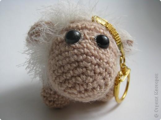 Я бедная овечка... фото 1