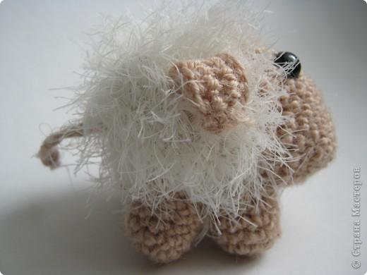 Я бедная овечка... фото 2