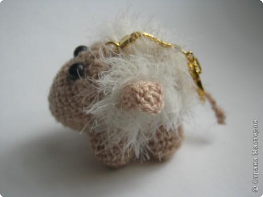Я бедная овечка... фото 4