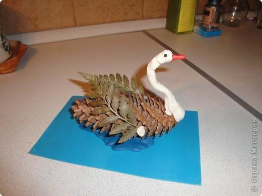 Птица из природного материала своими руками фото