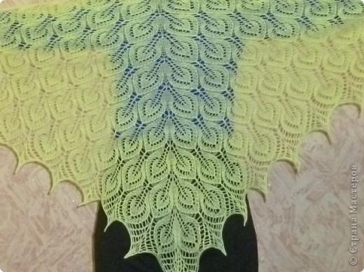 шаль Тюльпаны фото 5