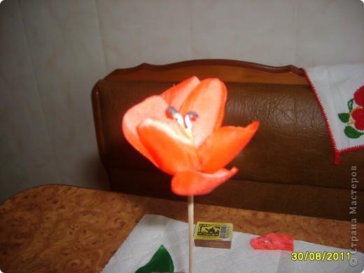 Шёлковый тюльпан МК фото 10