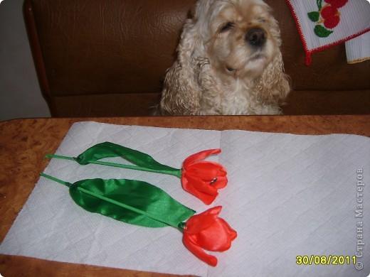 Шёлковый тюльпан МК фото 11