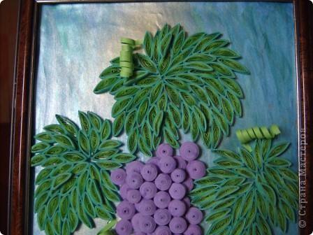 Угостила судьба гроздью нас виноградной, Налила нам в бокал капли нежной росы. Не забыла судьба и про нить Ариадны, Положив нам в ладони виноградной лозы.  Нам художник-судьба рисовала рассветы, Виноградной лозой вышивая любовь. Чародейка-судьба виноградное лето Ворожила-кружила, будоражила кровь.  Виноградную гроздь мы бережно-нежно, Как бесценнейший дар чародейки-судьбы ХранИм в душах своих, запивая безбрежным Океаном медовой виноградной любви. (Шестакова Мария)  фото 3