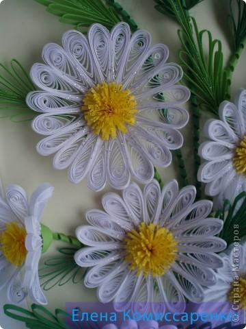 Иногда  задаю себе вопрос, что у нас  асоциируется  с летом. Конечно же солнце, зеркальная   река, зеленые луга .......,покрытые  самыми  летними и красивыми цветами---ромашками. Ромашка очень простой, с виду не замысловатый, но довольно интересный цветок.  Эта работа посвящается  именно им.  Работа выполнена в технике Квиллинг. фото 3