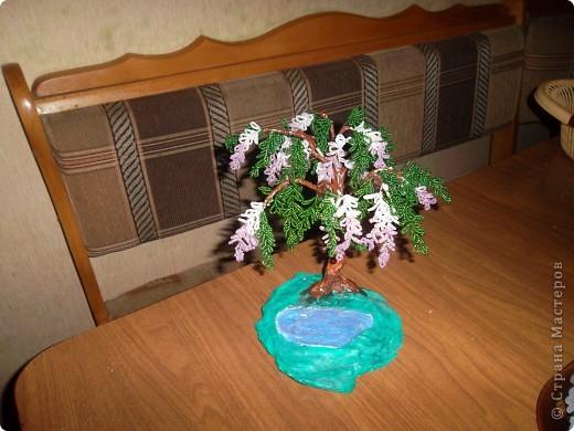Мне понадобилось: зеленый бисер 80 гр.,белого,розового и сиреневого по 30 гр., проволока 3мм  зеленого и белого цветов  по 25 метров, малярный скотч, гипс, проволока для каркаса,клей ПВА, мох, песок, камушки для декора и конечно же терпение...... фото 15