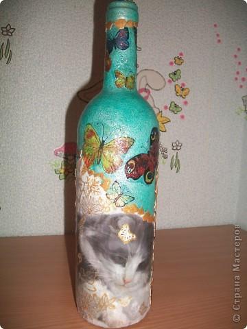 День всех котов: 1 марта!  фото 1