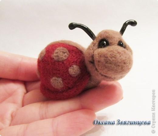Черепашка, улиточка и маленькая божья коровка. Всегда вместе.  фото 4