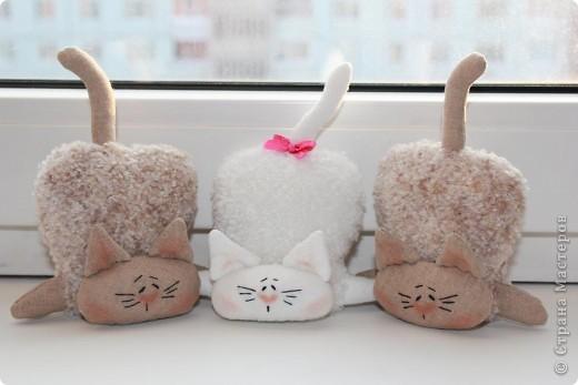 Кошки фото 2