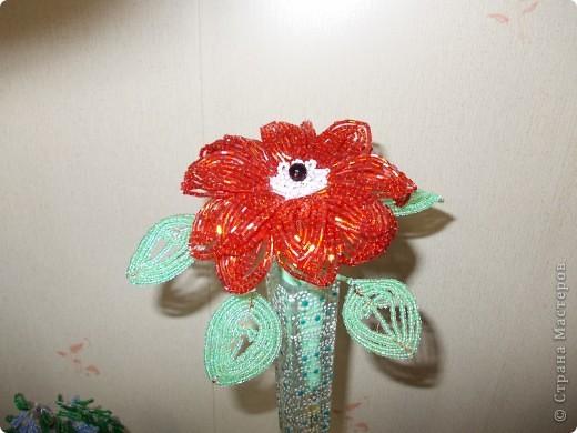 Аленький цветочек. фото 1