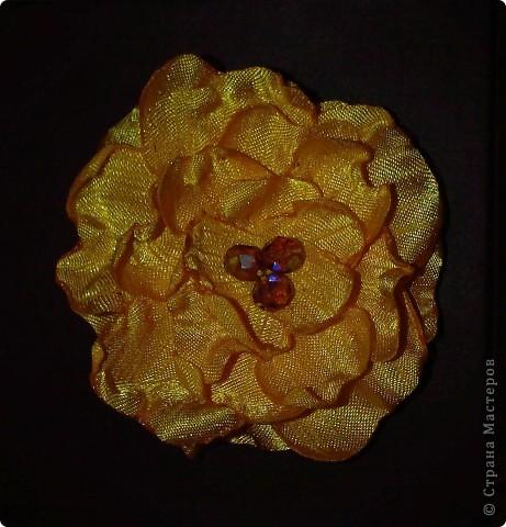 Цветочек фото 3