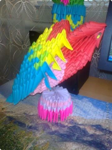 папугайчик)))