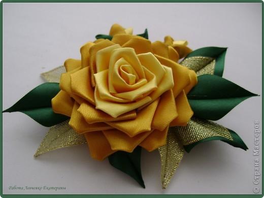 Розы, розы, розы... фото 2