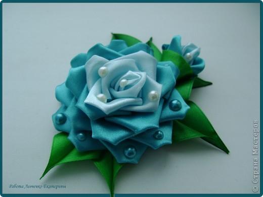Розы, розы, розы... фото 4