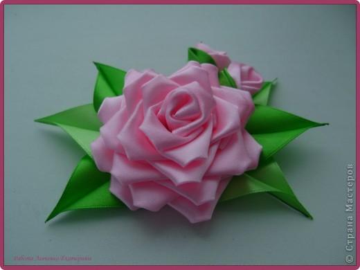 Розы, розы, розы... фото 3