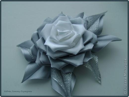 Розы, розы, розы... фото 5