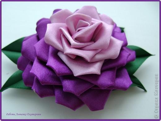 Розы, розы, розы... фото 7