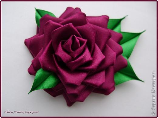 Розы, розы, розы... фото 8