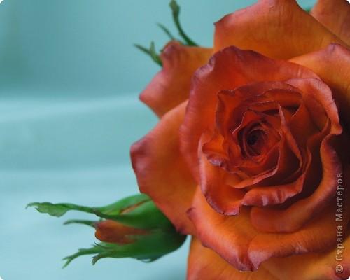 Поделка изделие 8 марта Валентинов день День рождения День учителя Свадьба Лепка розовое настроение  Фарфор холодный фото 5