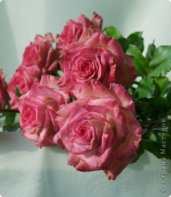 Вот такое розовое настроение у меня было... и вот что из этого получилось. Все цветы слеплены из готовых полимерных глин(холодный фарфор) modern clay, luna clay, Thai clay. фото 10