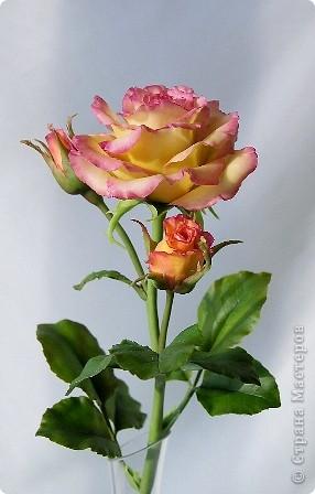 Поделка изделие 8 марта Валентинов день День рождения День учителя Свадьба Лепка розовое настроение  Фарфор холодный фото 11