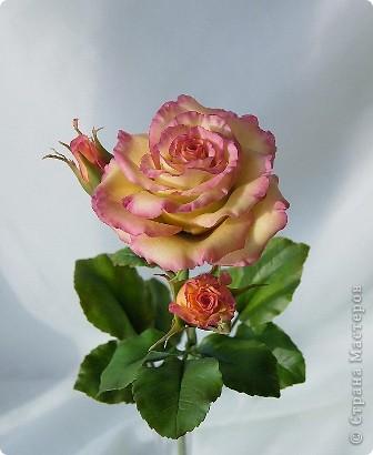 Вот такое розовое настроение у меня было... и вот что из этого получилось. Все цветы слеплены из готовых полимерных глин(холодный фарфор) modern clay, luna clay, Thai clay. фото 12