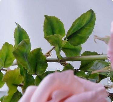 Вот такое розовое настроение у меня было... и вот что из этого получилось. Все цветы слеплены из готовых полимерных глин(холодный фарфор) modern clay, luna clay, Thai clay. фото 4