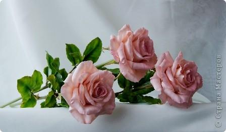Вот такое розовое настроение у меня было... и вот что из этого получилось. Все цветы слеплены из готовых полимерных глин(холодный фарфор) modern clay, luna clay, Thai clay. фото 2